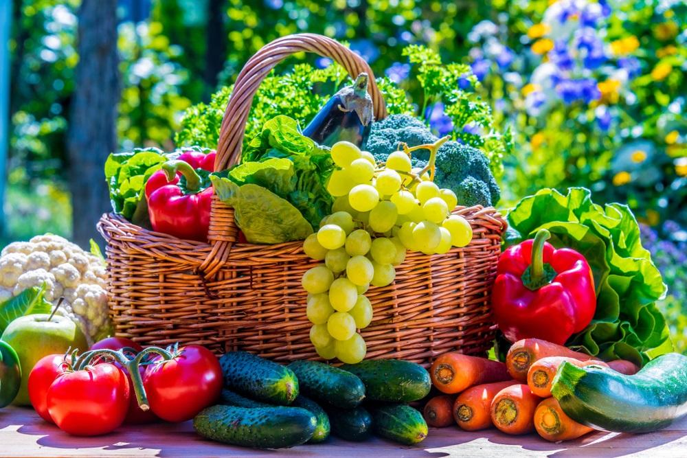 Können Bio-Lebensmittel das Krebsrisiko senken?